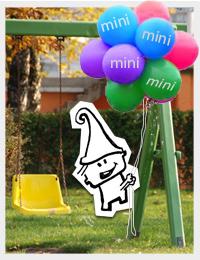 mini-reg-c